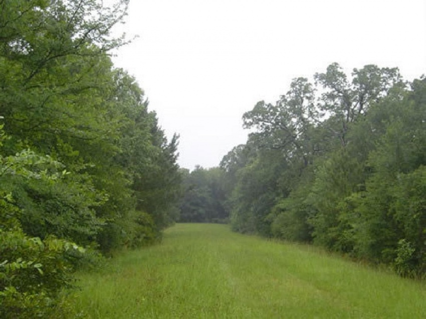 1/4 acre lot for sale